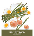 asparagus and eggs healthy food vector image