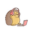 cartoon hedgehog sitting with laptop knees vector image