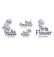 hand drawn sketch of iris flower vector image vector image