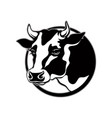 logo cow head with horns with black spots vector image vector image
