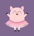 pig bellerina piggy piglet ballet dancer dressed vector image