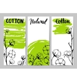 Set of template design cards with cotton vector image vector image