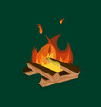 cartoon fire wood and campfire on a green vector image vector image