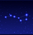 Constellation big dipper vector image