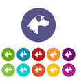 dog set icons vector image vector image