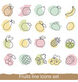 fruits and berries line icon set fruits and vector image vector image