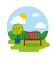 garden wooden bench potted tree floral day sky vector image