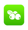 lingonberry icon green vector image