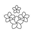 spa salon plumeria flowers linear icon vector image vector image
