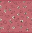 stylized cocoa pods and flowers on pink seamless vector image vector image