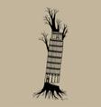 Tree pisa vector image vector image