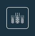 wheat icon line symbol premium quality isolated vector image