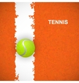 Tennis ball on court vector image