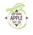 100 percent organic apple label with whole ripe vector image vector image