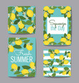 citrus fruits greeting cards and patterns on vector image