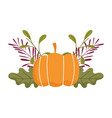 happy thanksgiving day pumpkin leaf foliage vector image vector image