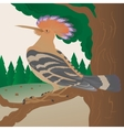 hoopoe on a tree branch vector image