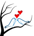 love birds perched on a branch tree heart love vector image