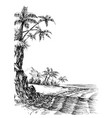 beach and sea view palm trees on shore vector image
