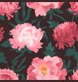 beautiful pink japanese peonies and chrysanthemum vector image