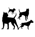 amstaff silhouette logo