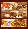 bread sketch for bakery shop vector image vector image