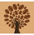 Coffee Beans tree vector image vector image
