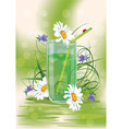 daisys in a glass vector image vector image