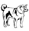 decorative standing portrait of dog shiba inu vector image vector image