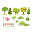 forest and park trees cartoon vector image