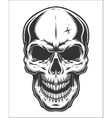 Monochrome of skull vector image vector image