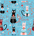 pattern in love cats vector image