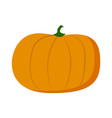 pumpkin isolated at white background sweet eco vector image vector image