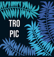 summer night tropic background with palm leaves vector image