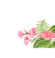 tropical flower garland isolated over white vector image vector image