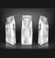 white blank plastic or foil pack realistic vector image