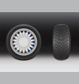 3d realistic black tire with tread vector image vector image