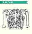 Diagram showing rib case vector image vector image