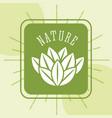 food organic nature vector image vector image