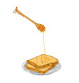 honey dripping from wooden dipper on bread slices vector image vector image