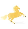 Horse-Isabela vector image vector image