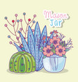 mason jar flowers cactus berries decoration vector image vector image