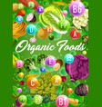 organic vegetarian vegetables and vitamins vector image vector image