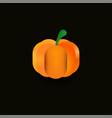 shiny pumpkin on a dark background vector image vector image