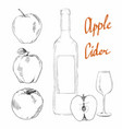 apple cider vinegar vector image vector image