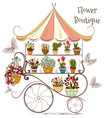 beautiful with flower shop or boutique fully flowe vector image