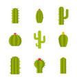 cactus icon set flat style vector image
