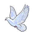 Free flying white dove isolated sketch style