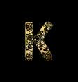 golden ornamental alphabet letter k font vector image vector image