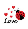love bug vector image vector image